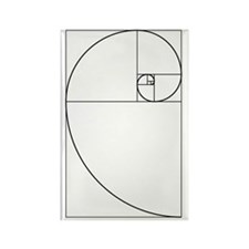 Golden Spiral Fibonacci Black Rectangle Magnet