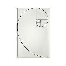 Golden Spiral Fibonacci Black Rectangle Magnet