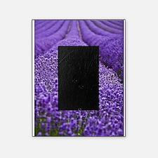 Lavender Picture Frame