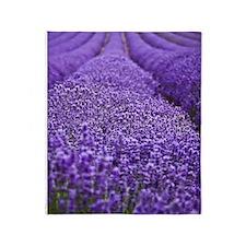 Lavender Throw Blanket