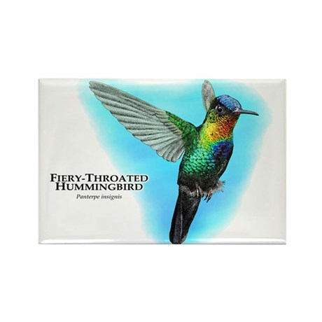 Fiery-Throated Hummingbird Rectangle Magnet