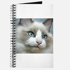 Cute Ragdoll cats Journal