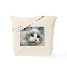 Cool Cat paintings Tote Bag