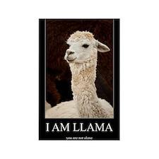 I Am Llama Magnets