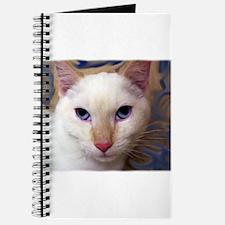 Cute Siamese cat fine art Journal