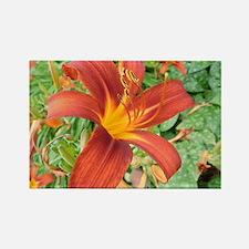 Red Macro Flower Rectangle Magnet