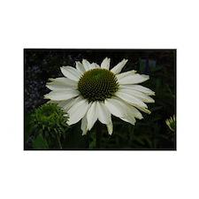 White Flower Rectangle Magnet