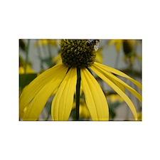 Yellow Macro Flower Rectangle Magnet