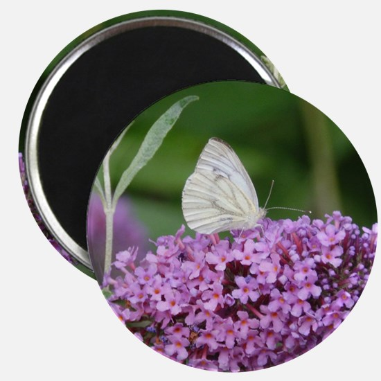 Purple Flower with Butterfly Magnet