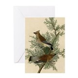 Audubon Greeting Cards