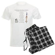 Veterinary Twelve Days Of Christmas Men's Pajamas