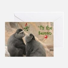 Mistletoe Monkies Greeting Cards