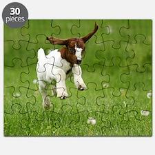 Peanut Puzzle