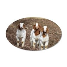 Smiling goats Wall Decal