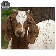 Wysteria Puzzle
