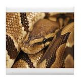 Snake Tile Coasters