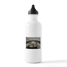 Happy Tortoise Water Bottle