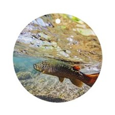 Brown Trout Round Ornament