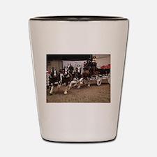 DSC04864.jpg Shot Glass