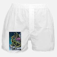 Dragon Nights! Boxer Shorts
