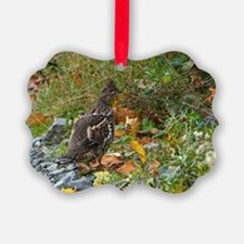 Partridge 2 Ornament