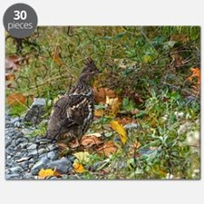 Partridge 2 Puzzle