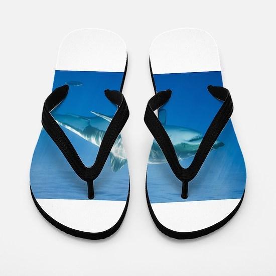 Great white shark Flip Flops