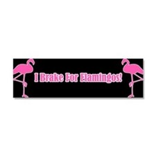 I brake for Car Magnet 10 x 3