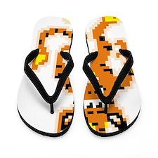 8-bit Tigrikorn Design Flip Flops