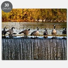Canadian Geese on Waterfall Puzzle
