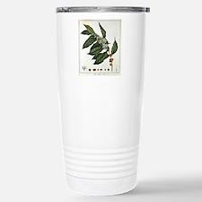 FIN-coffee-arabica-botanical.png Travel Mug