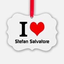 I love Stefan Salvatore Ornament