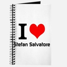 I love Stefan Salvatore Journal