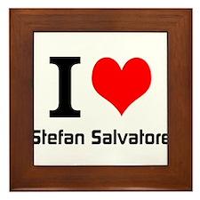 I love Stefan Salvatore Framed Tile