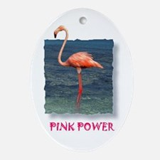 Pink Power Oval Ornament