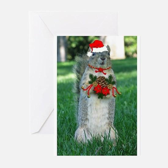 167204_8143.jpg Greeting Cards