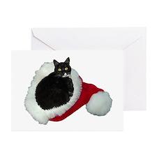 Cat Santa Hat Greeting Cards (Pk of 20)