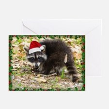 Raccoon Christmas Greeting Cards