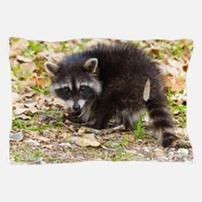 Raccoon Youngster Pillow Case