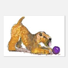 Soft Coated Wheaten Terrier with Ball Postcards (P