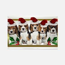 Christmas Beagles Magnets