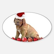 Christmas Dogue de Bordeaux puppy Decal