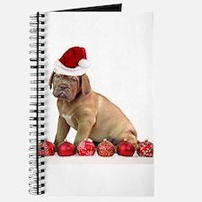 Christmas Dogue de Bordeaux puppy Journal
