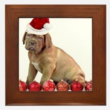 Christmas Dogue de Bordeaux puppy Framed Tile