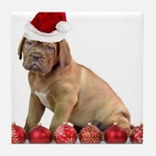 Christmas Dogue de Bordeaux puppy Tile Coaster