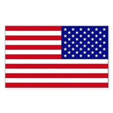 Reversed USA Flag Decal