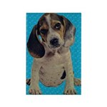 Vintage Beagle Puppy Rectangle Magnet