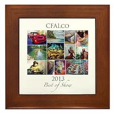 CFAI.Co 2013 Best Of Show Framed Tile