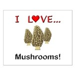 I Love Mushrooms Small Poster