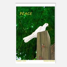 Annies Dove PEACE! Postcards (Package of 8)